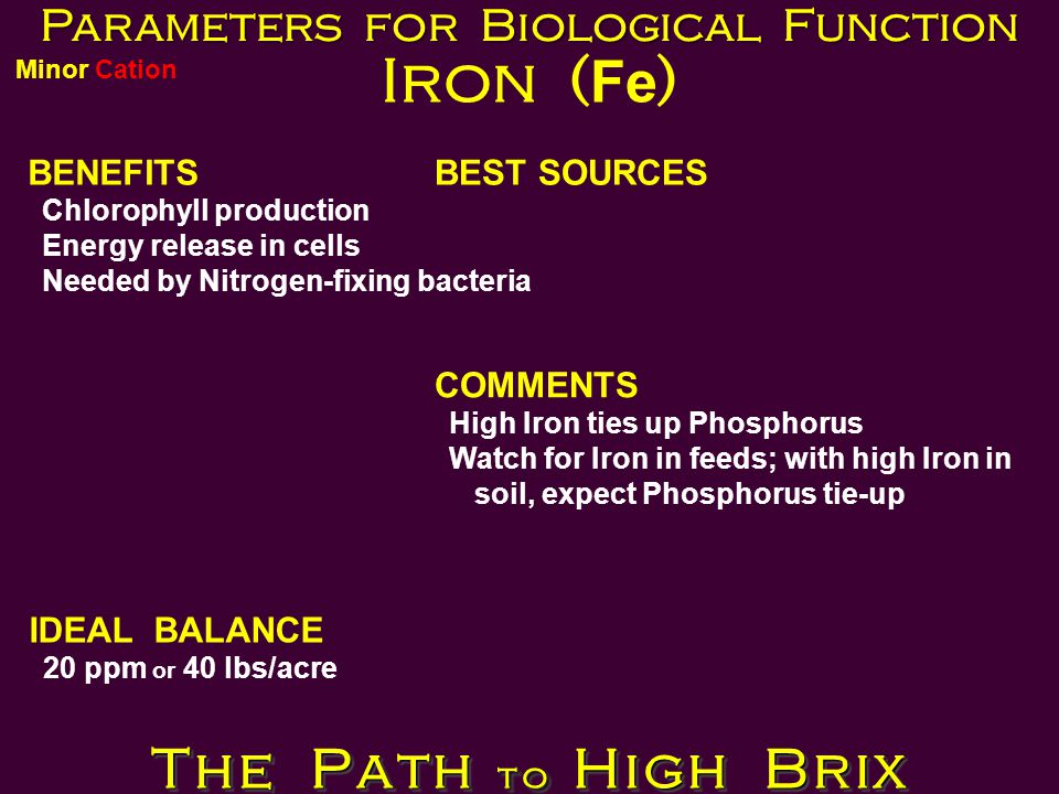 Parameters for Biological Function Iron ( Fe ) BENEFITS Chlorophyll production Energy release in cells Needed by Nitrogen-fixing bacteria BEST SOURCES IDEAL BALANCE 20 ppm or 40 lbs/acre COMMENTS High Iron ties up Phosphorus Watch for Iron in feeds; with high Iron in soil, expect Phosphorus tie-up The Path to High Brix Minor Cation