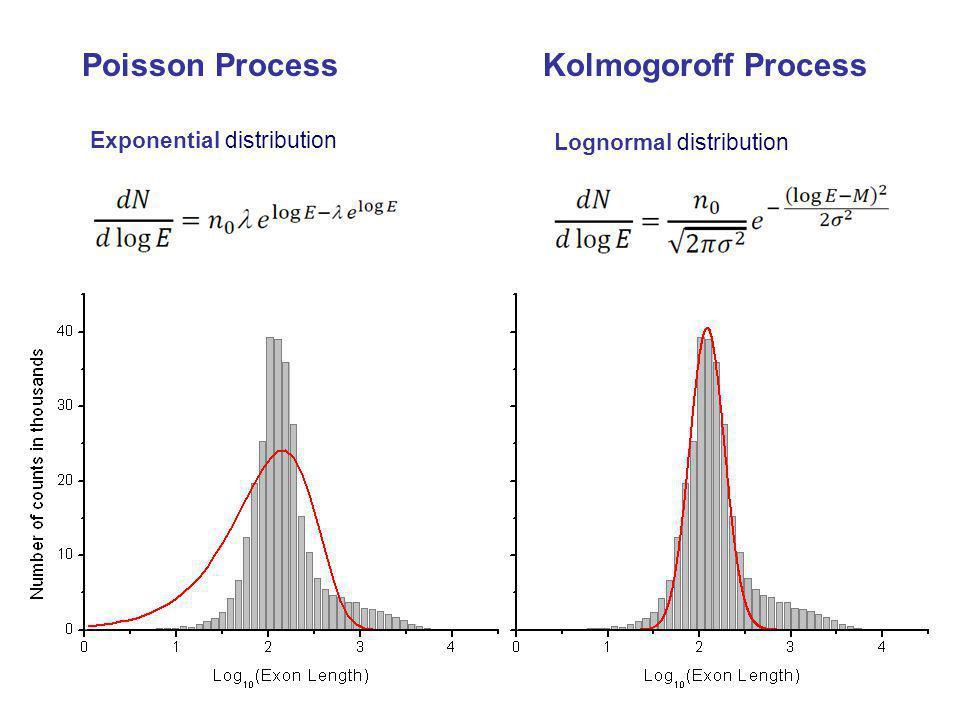 Poisson Process Kolmogoroff Process Lognormal distribution Exponential distribution