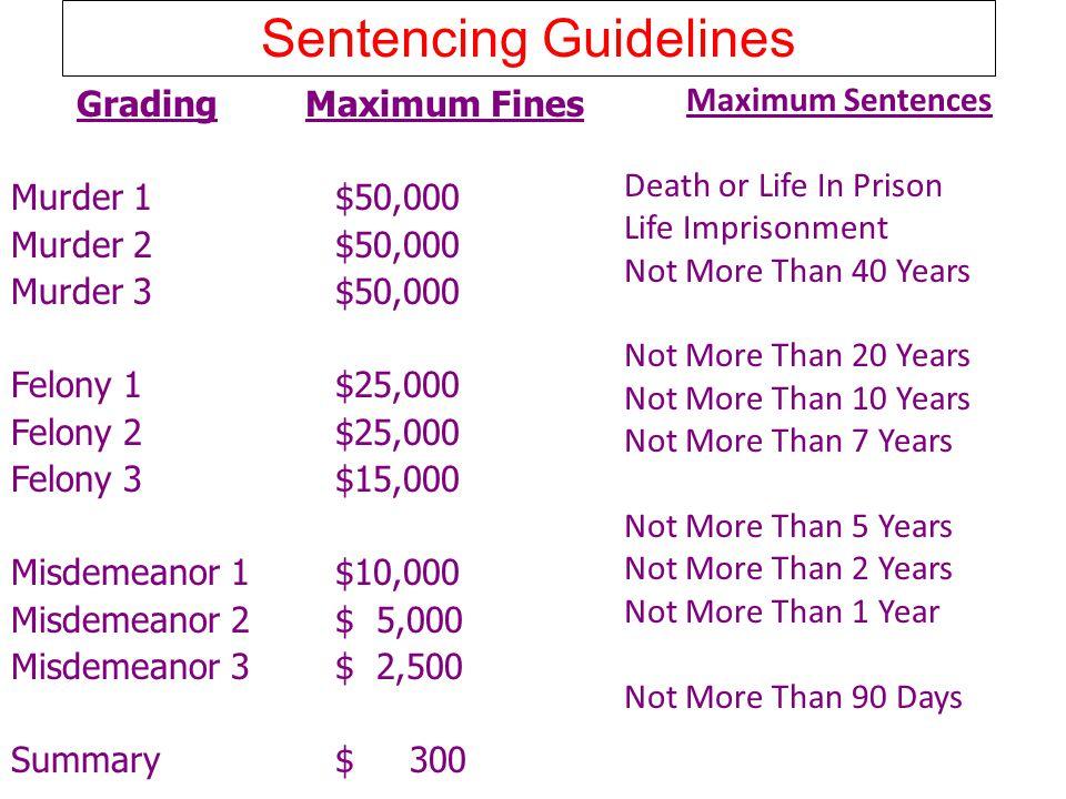 Sentencing Guidelines Maximum Sentences Death or Life In Prison Life Imprisonment Not More Than 40 Years Not More Than 20 Years Not More Than 10 Years