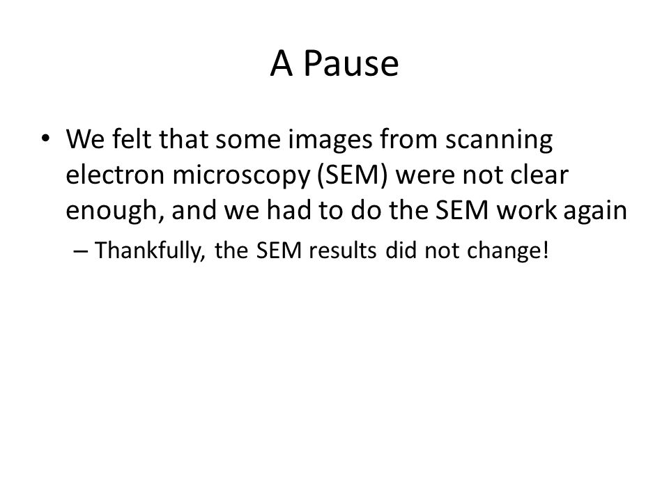 A Pause We felt that some images from scanning electron microscopy (SEM) were not clear enough, and we had to do the SEM work again – Thankfully, the SEM results did not change!
