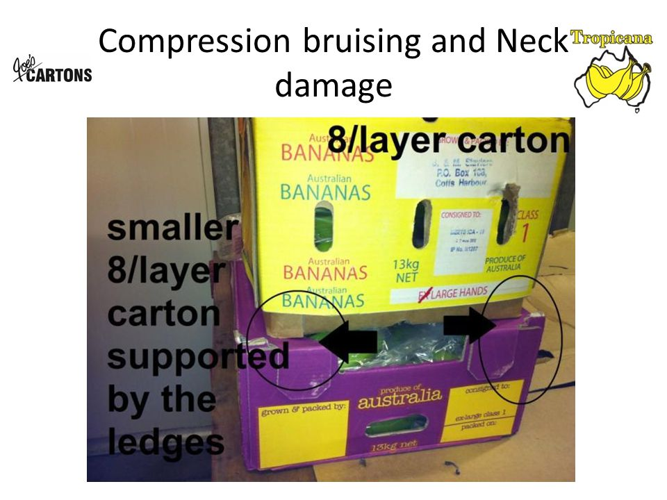 Compression bruising and Neck damage