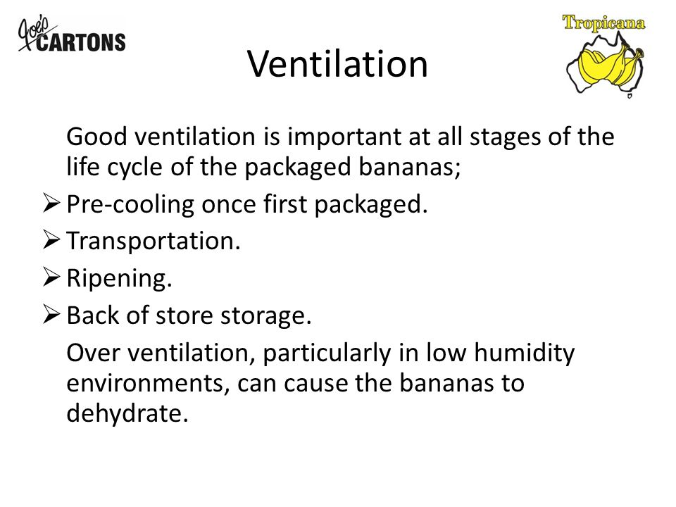 Ventilation Good ventilation is important at all stages of the life cycle of the packaged bananas;  Pre-cooling once first packaged.