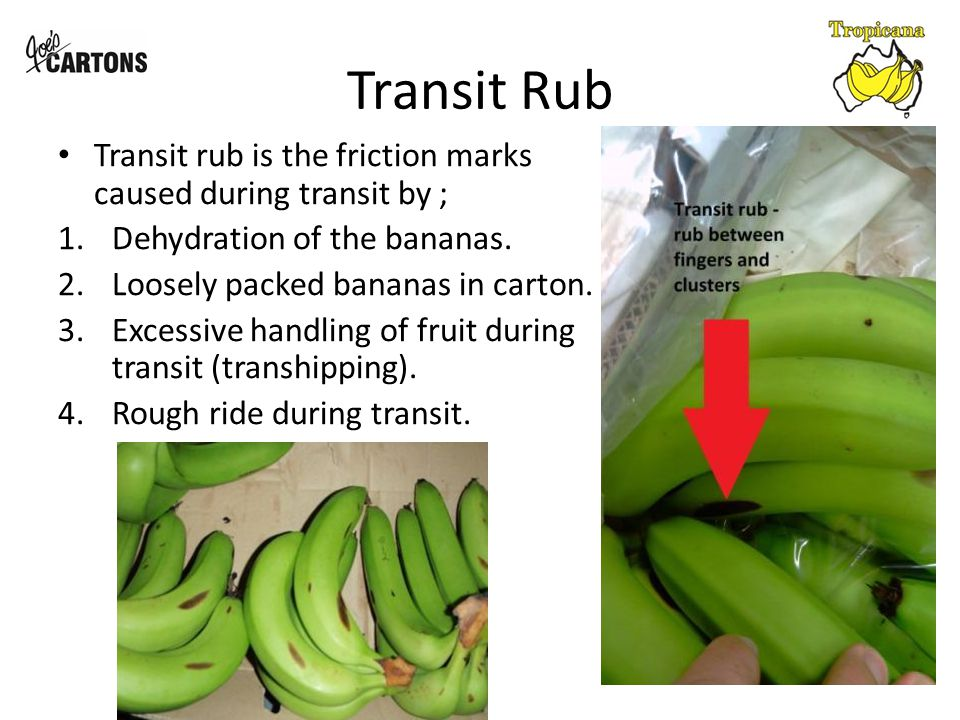 Transit rub - Hydration Avoiding excessive dehydration of freshly packaged bananas is critical to reducing transit rub.
