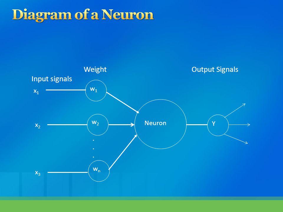 Neuron w1w1 w2w2 wnwn Y...... x1x1 x2x2 x3x3 Input signals WeightOutput Signals