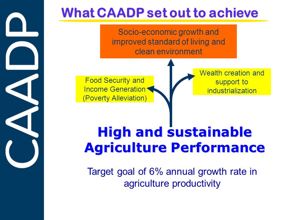 PARTNERSHIPS IN SUPPORT OF CAADP High and sustainable Agriculture Performance Food Security and Income Generation (Poverty Alleviation) Wealth creation and support to industrialization Socio-economic growth and improved standard of living and clean environment Target goal of 6% annual growth rate in agriculture productivity What CAADP set out to achieve