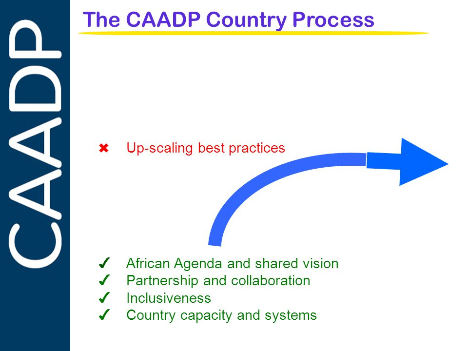 PARTNERSHIPS IN SUPPORT OF CAADP The CAADP Country Process ✔ African Agenda and shared vision ✔ Partnership and collaboration ✔ Inclusiveness ✔ Country capacity and systems ✖ Up-scaling best practices