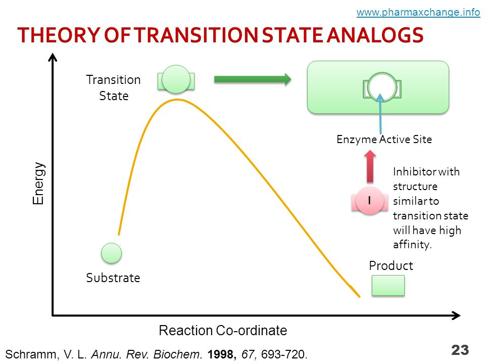 23 Substrate Product Transition State Enzyme Active Site Schramm, V.