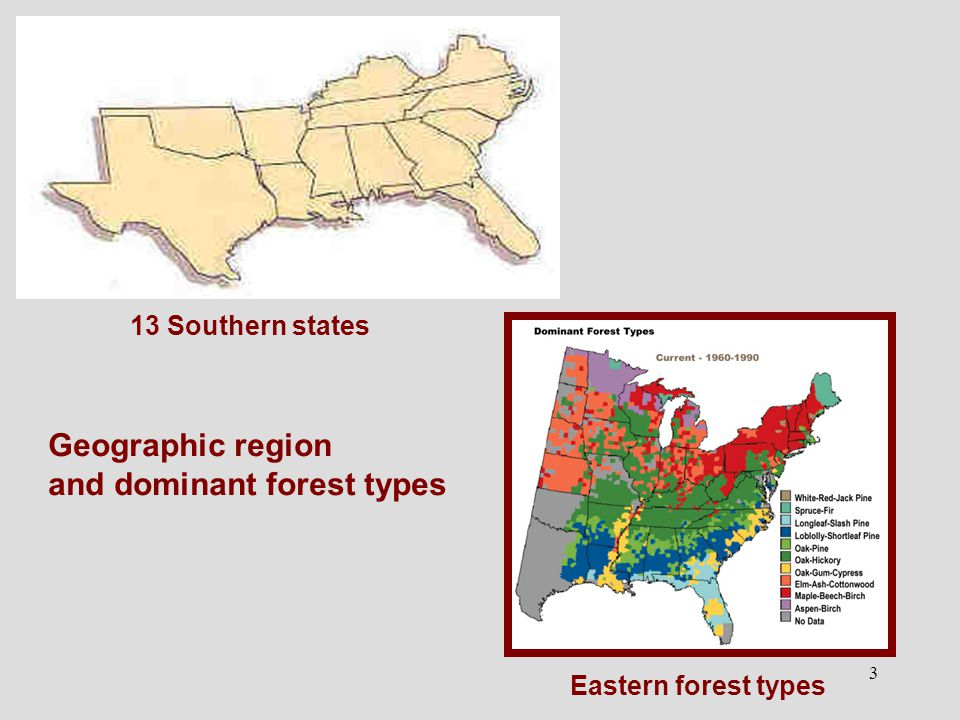 3 Eastern forest types 13 Southern states Geographic region and dominant forest types