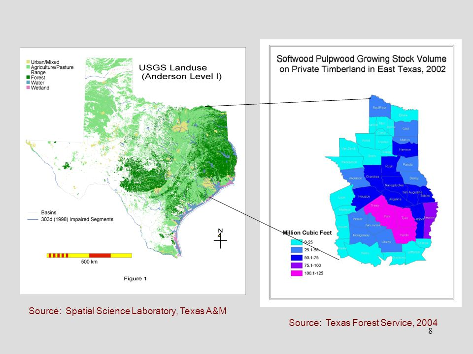 8 Source: Texas Forest Service, 2004 Source: Spatial Science Laboratory, Texas A&M