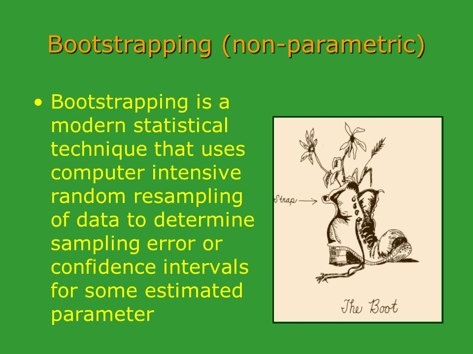Bootstrapping (non-parametric) Bootstrapping is a modern statistical technique that uses computer intensive random resampling of data to determine sampling error or confidence intervals for some estimated parameter