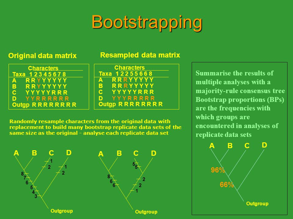 Bootstrapping Original data matrix Characters Taxa 1 2 3 4 5 6 7 8 A R R Y Y Y Y Y Y B R R Y Y Y Y Y Y C Y Y Y Y Y R R R D Y Y R R R R R R Outgp R R R R R R R R ABC D 1 2 1 2 3 4 5 6 7 8 A BCD 1 2 2 5 5 6 6 8 Outgroup Resampled data matrix Characters Taxa 1 2 2 5 5 6 6 8 A R R R Y Y Y Y Y B R R R Y Y Y Y Y C Y Y Y Y Y R R R D Y Y Y R R R R R Outgp R R R R R R R R Randomly resample characters from the original data with replacement to build many bootstrap replicate data sets of the same size as the original - analyse each replicate data set Summarise the results of multiple analyses with a majority-rule consensus tree Bootstrap proportions (BPs) are the frequencies with which groups are encountered in analyses of replicate data sets ABC D Outgroup 96% 66%