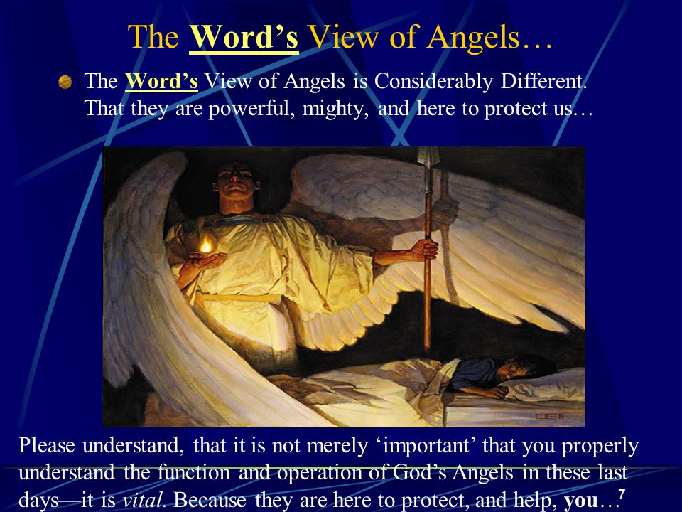 7 The Word's View of Angels… The Word's View of Angels is Considerably Different.