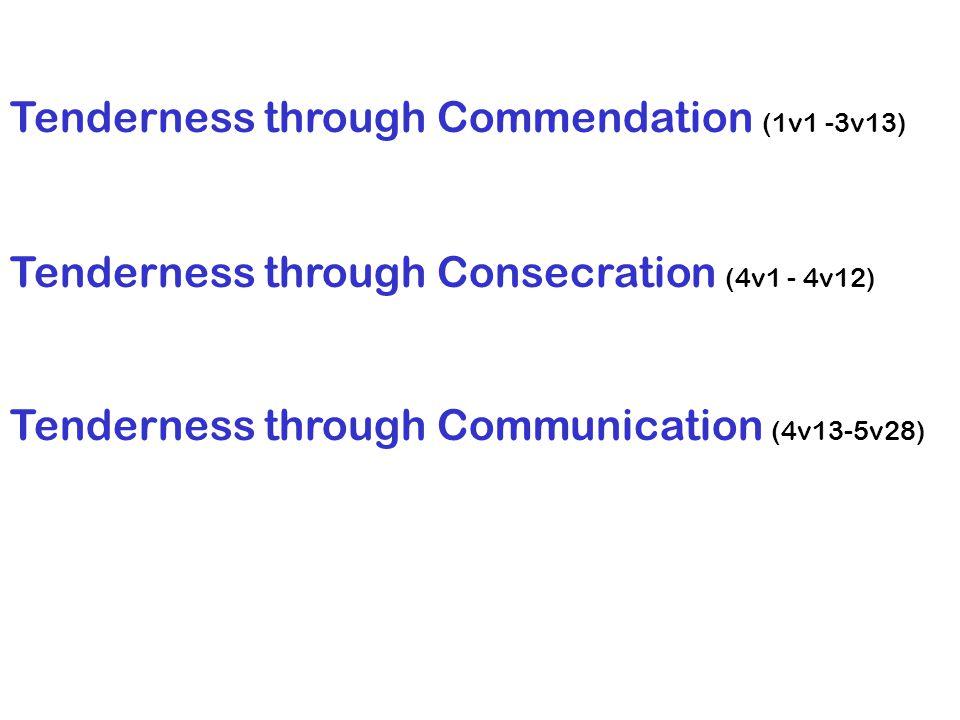 Tenderness through Commendation (1v1 -3v13) Tenderness through Consecration (4v1 - 4v12) Tenderness through Communication (4v13-5v28)