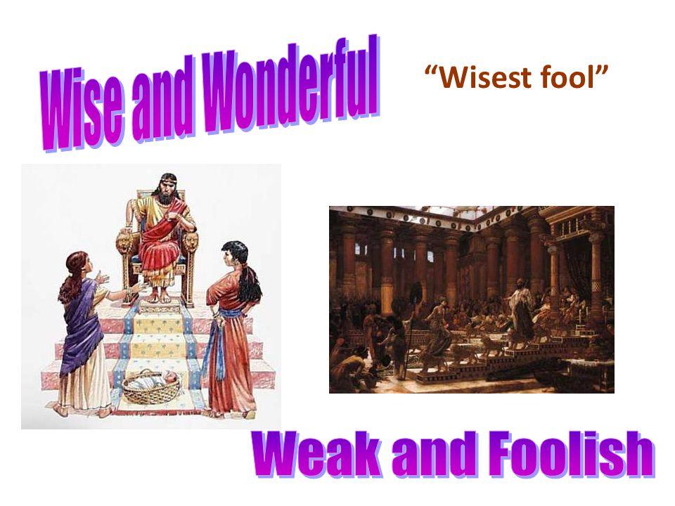 Wisest fool