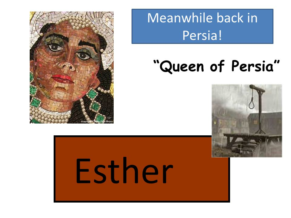 Queen of Persia Meanwhile back in Persia!