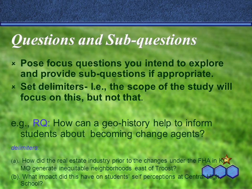 Questions and Sub-questions  Pose focus questions you intend to explore and provide sub-questions if appropriate.