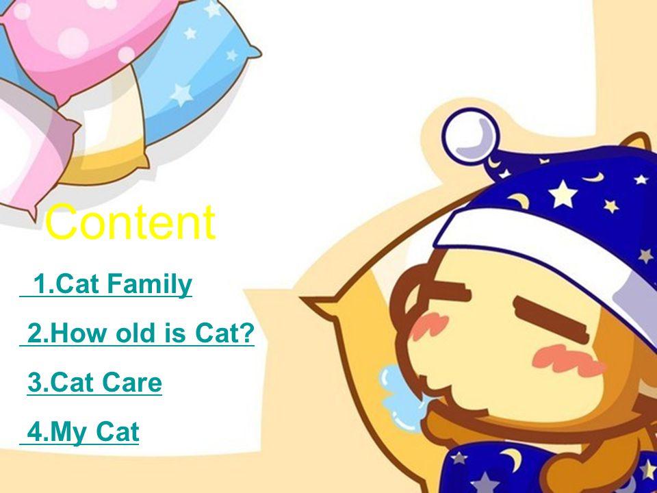Content 1.Cat Family 2.How old is Cat 3.Cat Care 4.My Cat