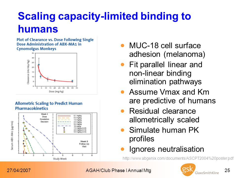 27/04/2007AGAH/Club Phase I Annual Mtg25 Scaling capacity-limited binding to humans  MUC-18 cell surface adhesion (melanoma)  Fit parallel linear and non-linear binding elimination pathways  Assume Vmax and Km are predictive of humans  Residual clearance allometrically scaled  Simulate human PK profiles  Ignores neutralisation http://www.abgenix.com/documents/ASCPT2004%20poster.pdf