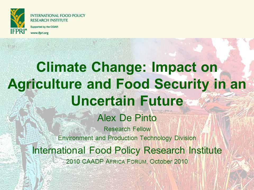 Climate Change: Impact on Agriculture and Food Security in an Uncertain Future Alex De Pinto Research Fellow Environment and Production Technology Div