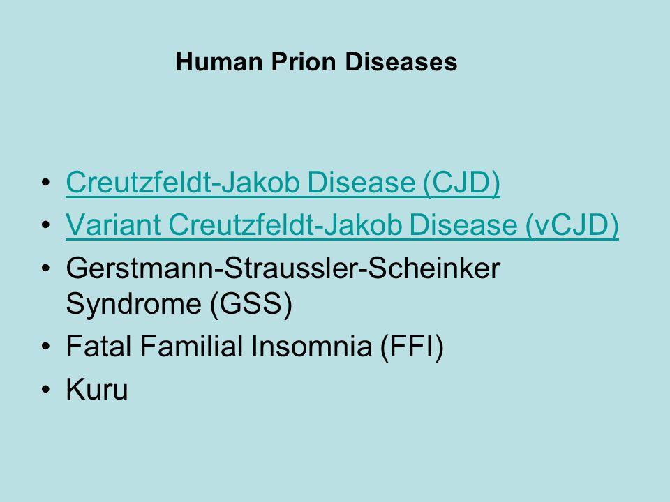 Human Prion Diseases Creutzfeldt-Jakob Disease (CJD) Variant Creutzfeldt-Jakob Disease (vCJD) Gerstmann-Straussler-Scheinker Syndrome (GSS) Fatal Familial Insomnia (FFI) Kuru