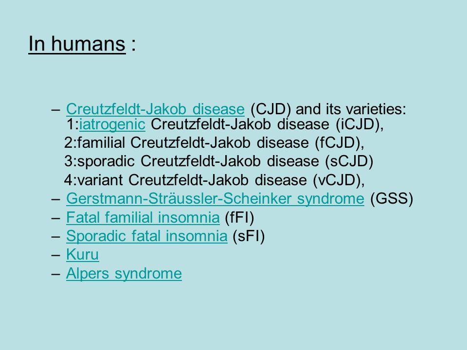 In humans : –Creutzfeldt-Jakob disease (CJD) and its varieties: 1:iatrogenic Creutzfeldt-Jakob disease (iCJD),Creutzfeldt-Jakob diseaseiatrogenic 2:familial Creutzfeldt-Jakob disease (fCJD), 3:sporadic Creutzfeldt-Jakob disease (sCJD) 4:variant Creutzfeldt-Jakob disease (vCJD), –Gerstmann-Sträussler-Scheinker syndrome (GSS)Gerstmann-Sträussler-Scheinker syndrome –Fatal familial insomnia (fFI)Fatal familial insomnia –Sporadic fatal insomnia (sFI)Sporadic fatal insomnia –KuruKuru –Alpers syndromeAlpers syndrome