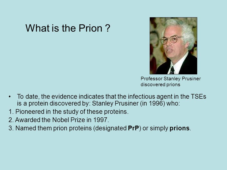 What is the Prion ? To date, the evidence indicates that the infectious agent in the TSEs is a protein discovered by: Stanley Prusiner (in 1996) who: