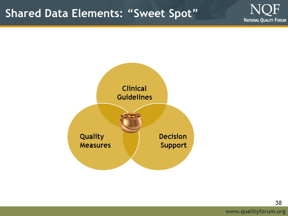 www.qualityforum.org Shared Data Elements: Sweet Spot Clinical Guidelines Decision Support Quality Measures 38