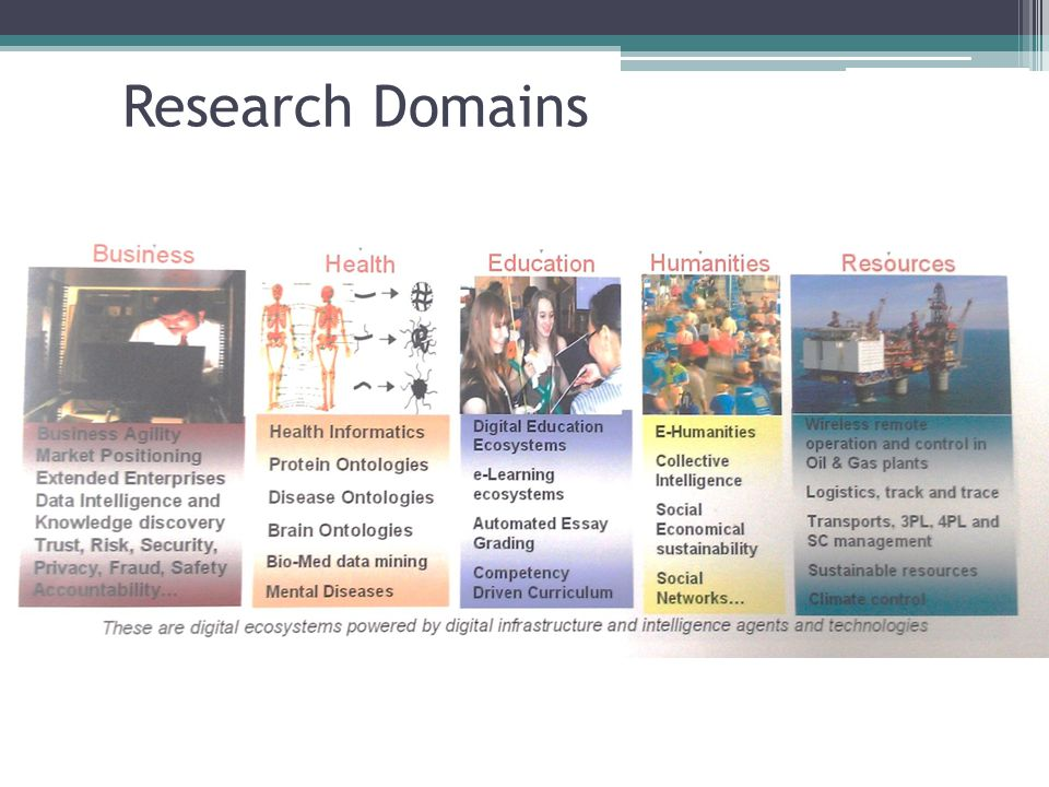 Research Domains