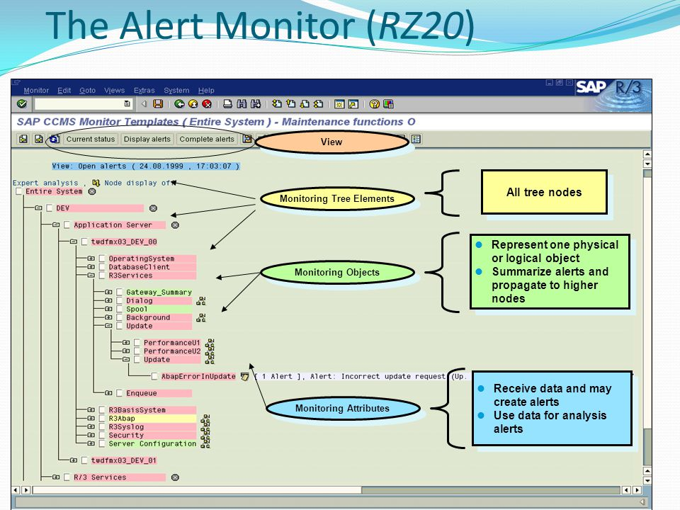 The Alert Monitor (RZ20) Monitoring Tree Elements All tree nodes Represent one physical or logical object Summarize alerts and propagate to higher nodes Represent one physical or logical object Summarize alerts and propagate to higher nodes Receive data and may create alerts Use data for analysis alerts Receive data and may create alerts Use data for analysis alerts Monitoring Objects Monitoring Attributes View