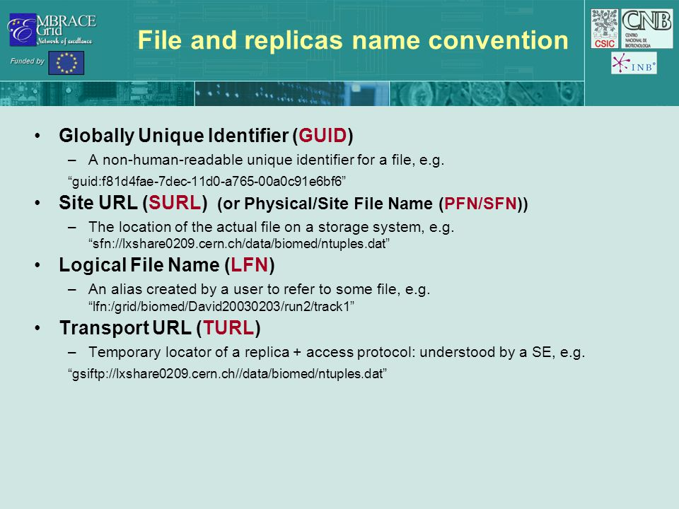 File and replicas name convention Globally Unique Identifier (GUID) –A non-human-readable unique identifier for a file, e.g.