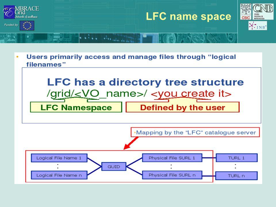 LFC name space
