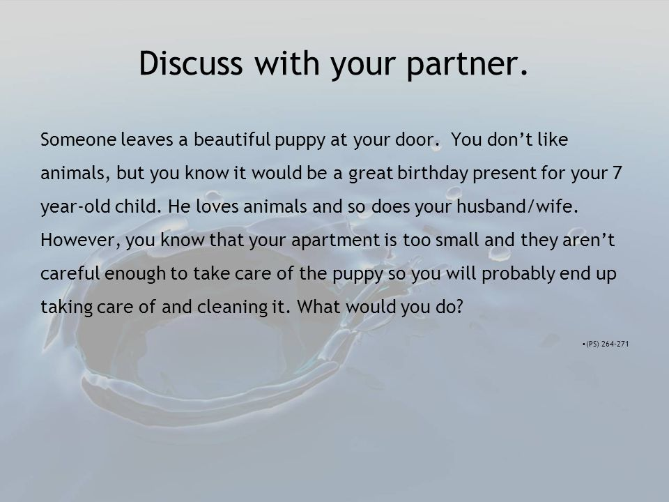 Discuss with your partner. Someone leaves a beautiful puppy at your door.
