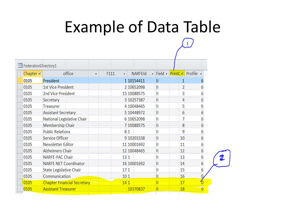 Example of Data Table
