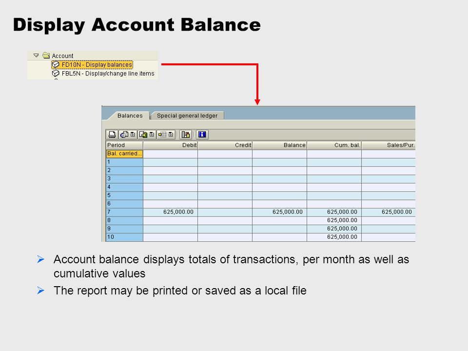 Display Account Balance  Account balance displays totals of transactions, per month as well as cumulative values  The report may be printed or saved