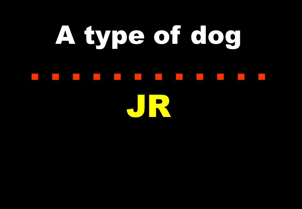 A type of dog...... JR
