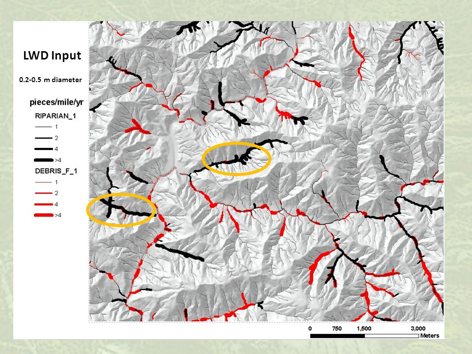0 to 30 yrs 60 to 90 yrs > 90 yrs Conceptual illustration of changes in channel morphology of headwater streams based on the time since previous disturbance.