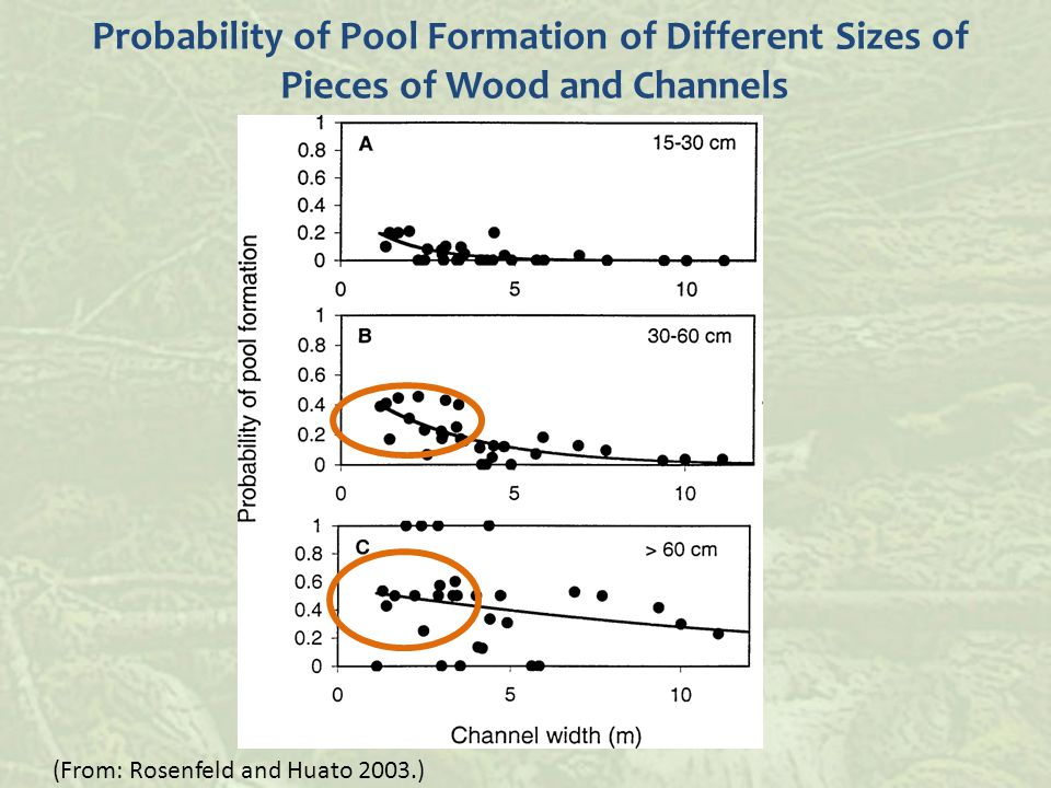 (From: Rosenfeld and Huato 2003.) Probability of Pool Formation of Different Sizes of Pieces of Wood and Channels