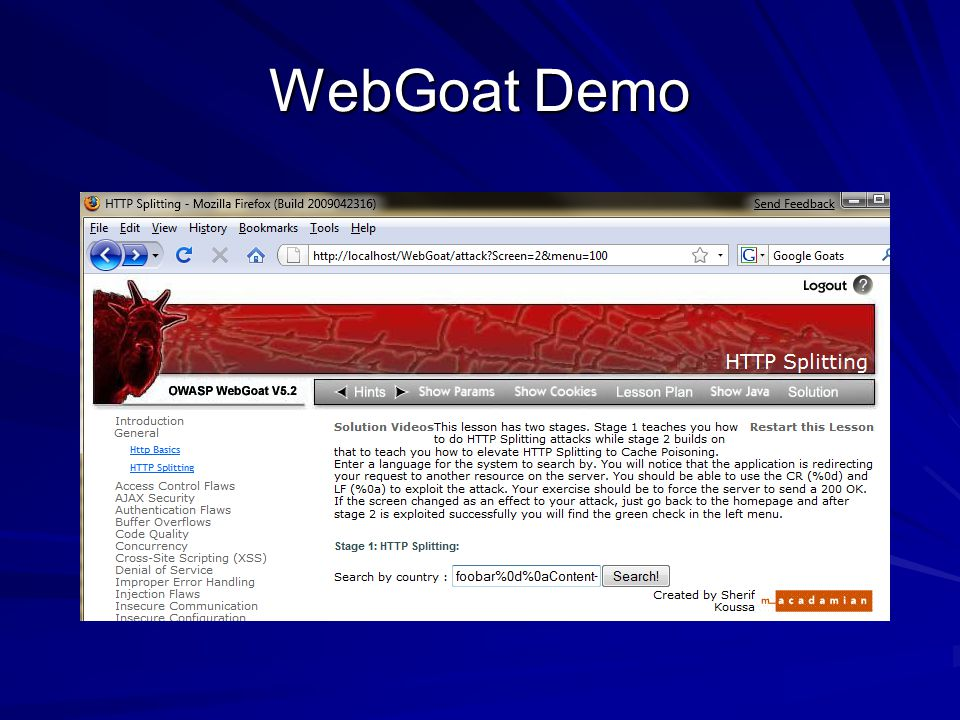 WebGoat Demo