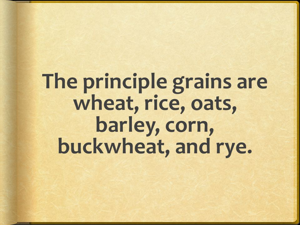 The principle grains are wheat, rice, oats, barley, corn, buckwheat, and rye.