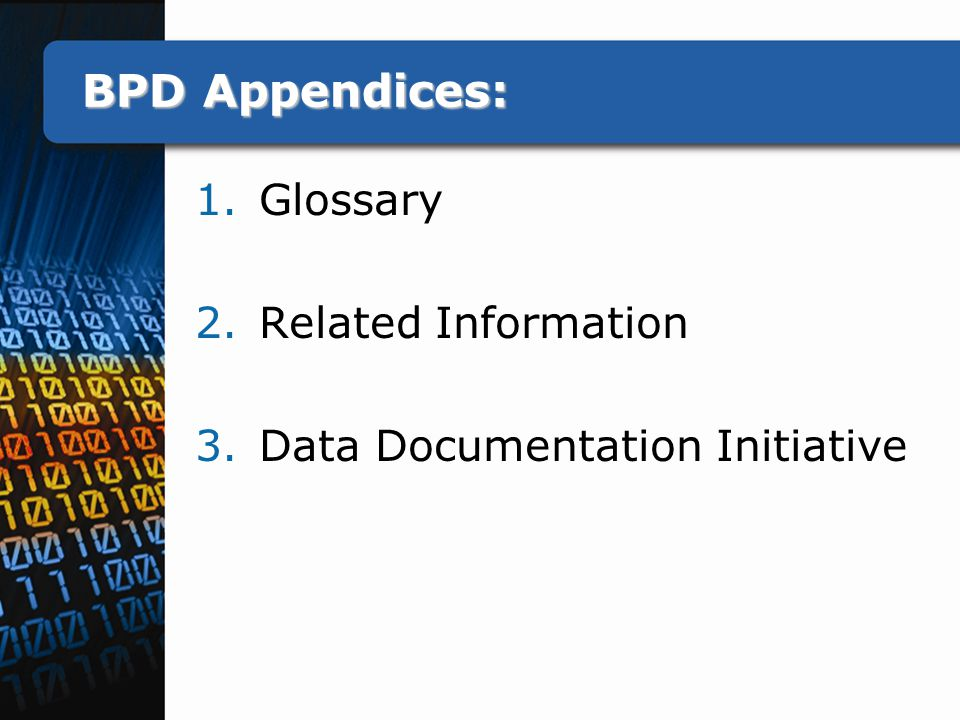 BPD Appendices: 1.Glossary 2.Related Information 3.Data Documentation Initiative