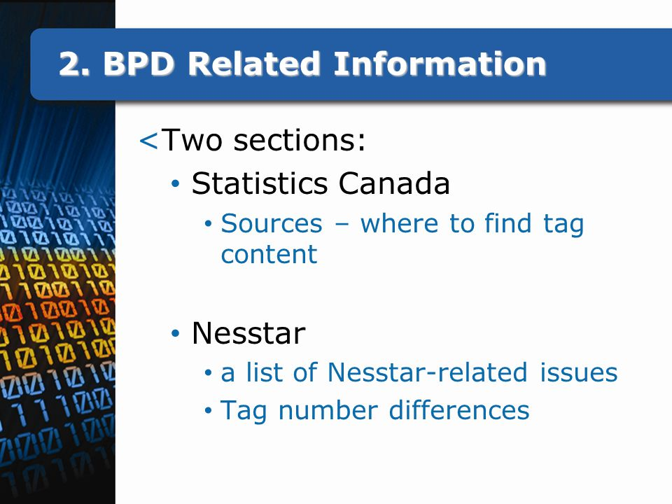 2. BPD Related Information <Two sections: Statistics Canada Sources – where to find tag content Nesstar a list of Nesstar-related issues Tag number di