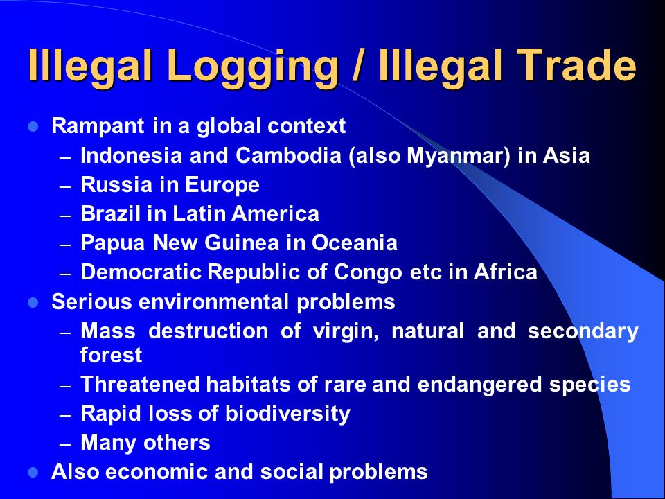 Illegal Logging / Illegal Trade Rampant in a global context – Indonesia and Cambodia (also Myanmar) in Asia – Russia in Europe – Brazil in Latin Ameri