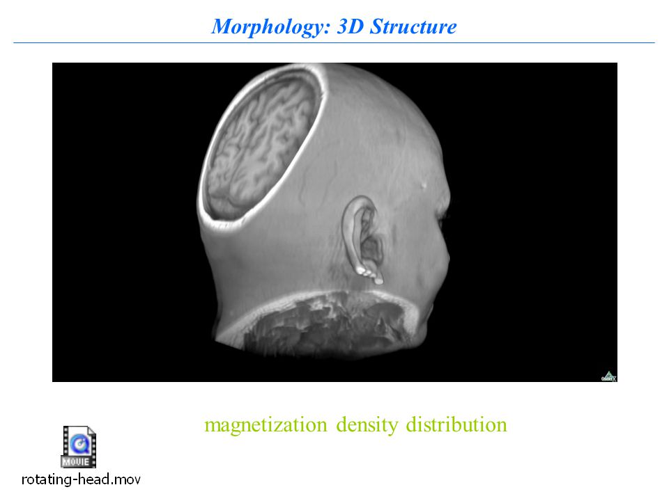 Morphology: 3D Structure magnetization density distribution