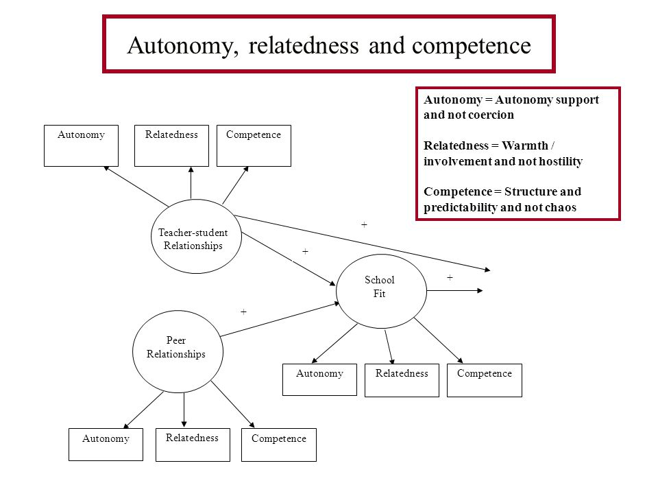 Autonomy, relatedness and competence School Fit Teacher-student Relationships RelatednessCompetence Peer Relationships Autonomy Relatedness Competence