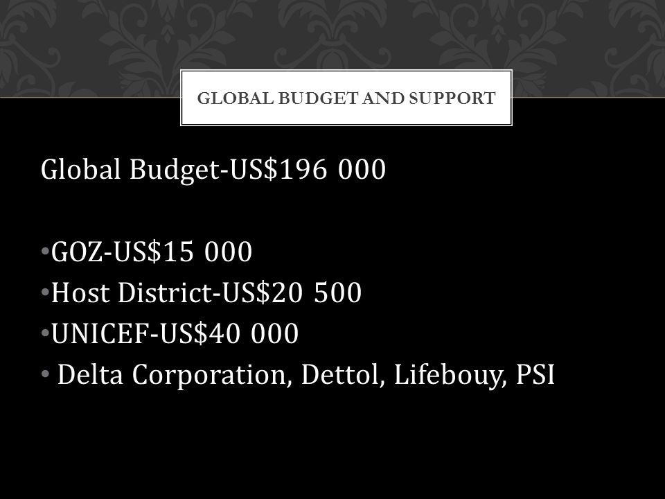Global Budget-US$196 000 GOZ-US$15 000 Host District-US$20 500 UNICEF-US$40 000 Delta Corporation, Dettol, Lifebouy, PSI GLOBAL BUDGET AND SUPPORT