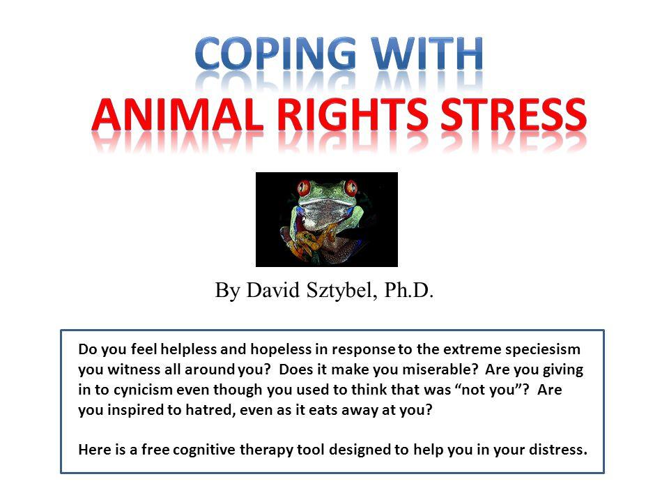 By David Sztybel, Ph.D.