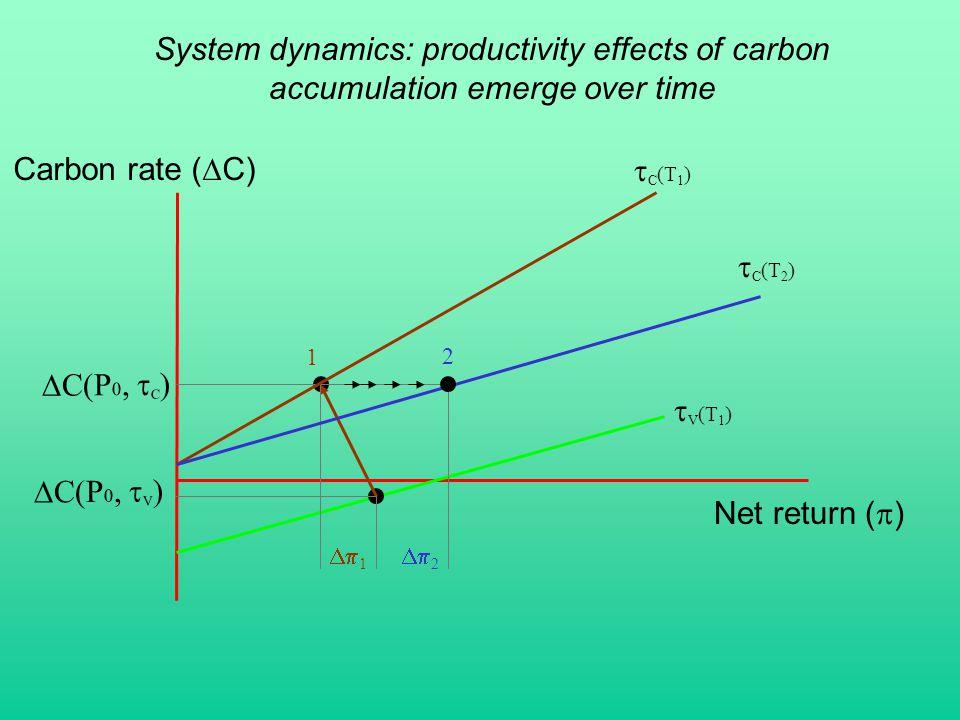Net return (  ) Carbon rate (  C)  C(P 0,  C )  C(P 0,  V ) System dynamics: productivity effects of carbon accumulation emerge over time  C (T 1 )  C (T 2 )  V (T 1 )  1  2 1 2