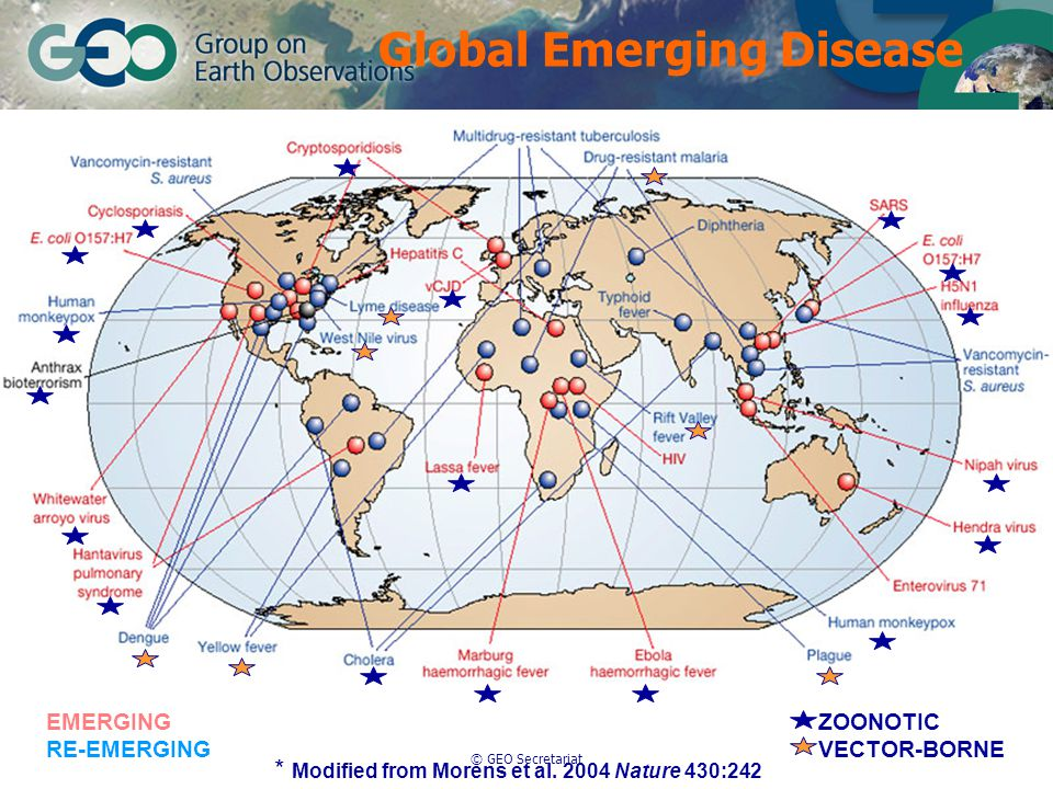 © GEO Secretariat EMERGING RE-EMERGING ZOONOTIC VECTOR-BORNE * Modified from Morens et al.
