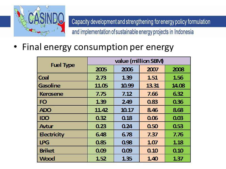Final energy consumption per energy