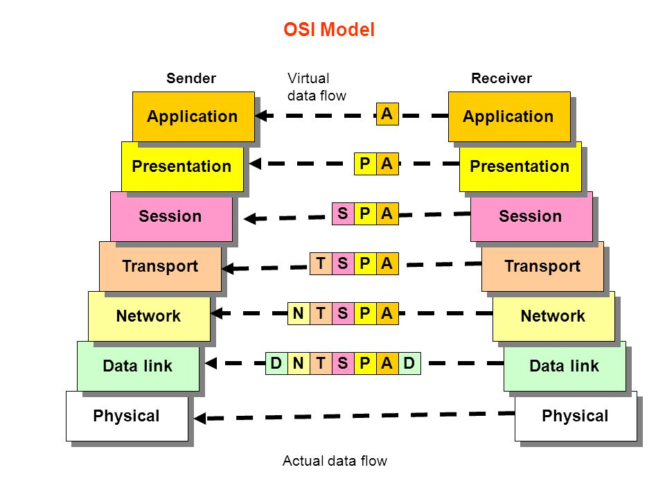 Physical Data link Network Transport Session Presentation Application Physical Data link Network Transport Session Presentation Application A A A A A
